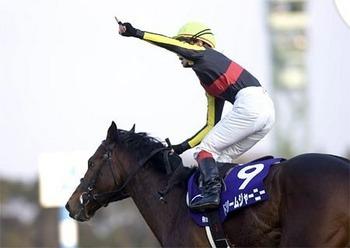 kiba-horse arimakinen dream jurny.jpg